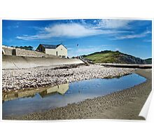 Charmouth Heritage Coast Centre Poster