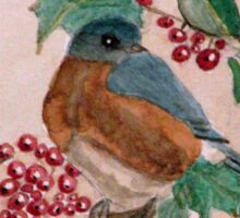 Dawn In The Holly Tree Sticker