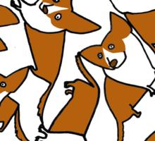 Crazeee Corgiiiis Sticker