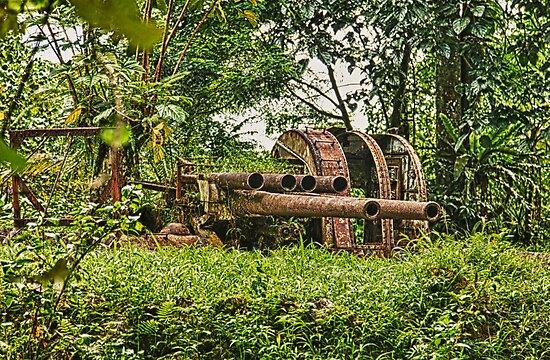 Japanese canon on Sokeh Rock, Pohnpei by John Marelli