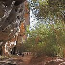 Walking through Windjana Gorge,  Western Australia by Margaret  Hyde