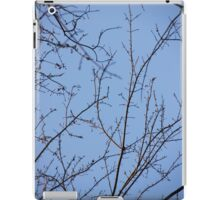 Small Bare Branches iPad Case/Skin