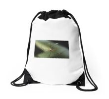 Spider on the web Drawstring Bag