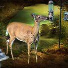 Eden (White Tail Deer) by Yannik Hay