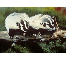 Brother Badger Photographic Print