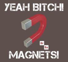Magnets Bitch! by csztova