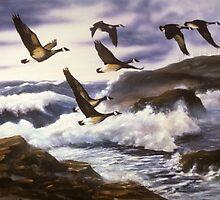 Hugging the Coastline by Chris J Worden Gregg