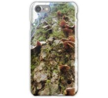 Climb That Tree iPhone Case/Skin