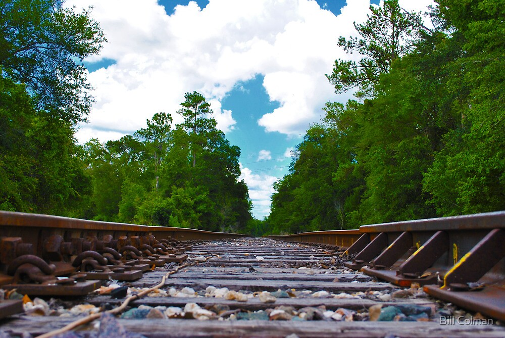 The Tracks by Bill Colman
