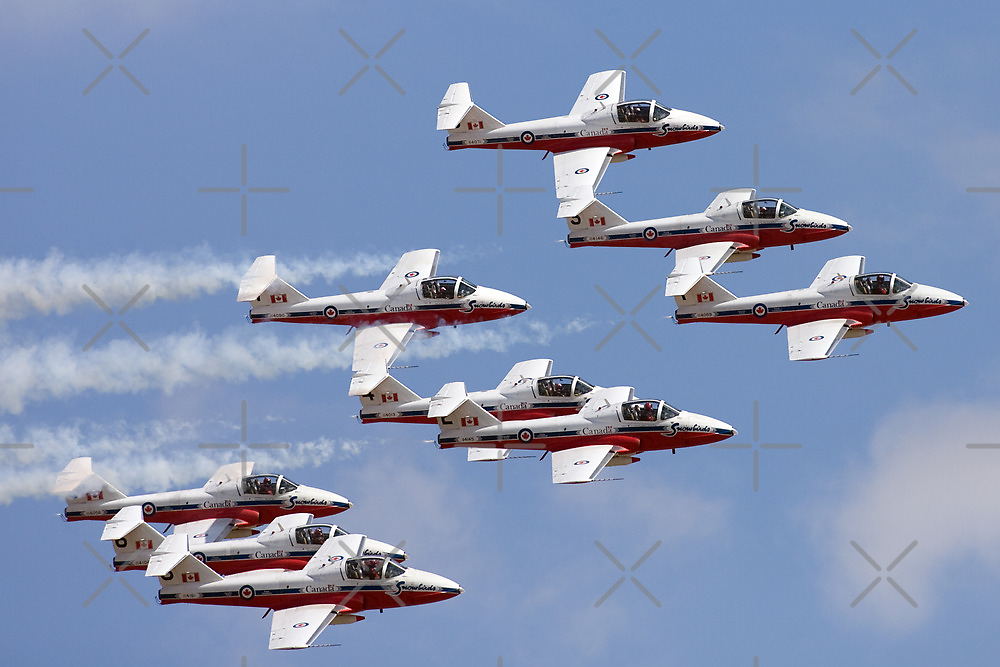Canadian Armed Forces Snowbirds by Mark  Spowart