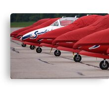 Canadian Armed Forces Snowbirds Canvas Print