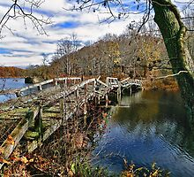 Troubled Bridge Over Still Waters by Lanis Rossi