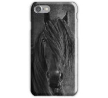 Frisian iPhone Case/Skin