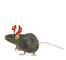 Christmas Rat by annewinkler1