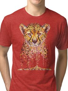 Fading Fast Tri-blend T-Shirt