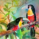 Red-breasted Toucans by arline wagner