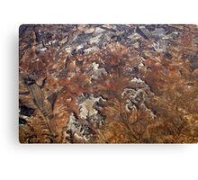 Spanish Terrain Canvas Print