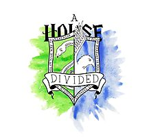 Wizard House Divided {Sly & Smart} Photographic Print