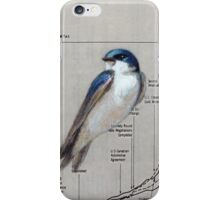 Swallow Trade iPhone Case/Skin