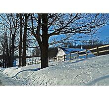 Blue Monday.  White Winter.  Photographic Print