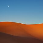 Coral Pink Sand Dunes by Shane Moss