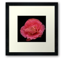 Pretty in Pink and Black Framed Print