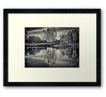 In Reflection Framed Print