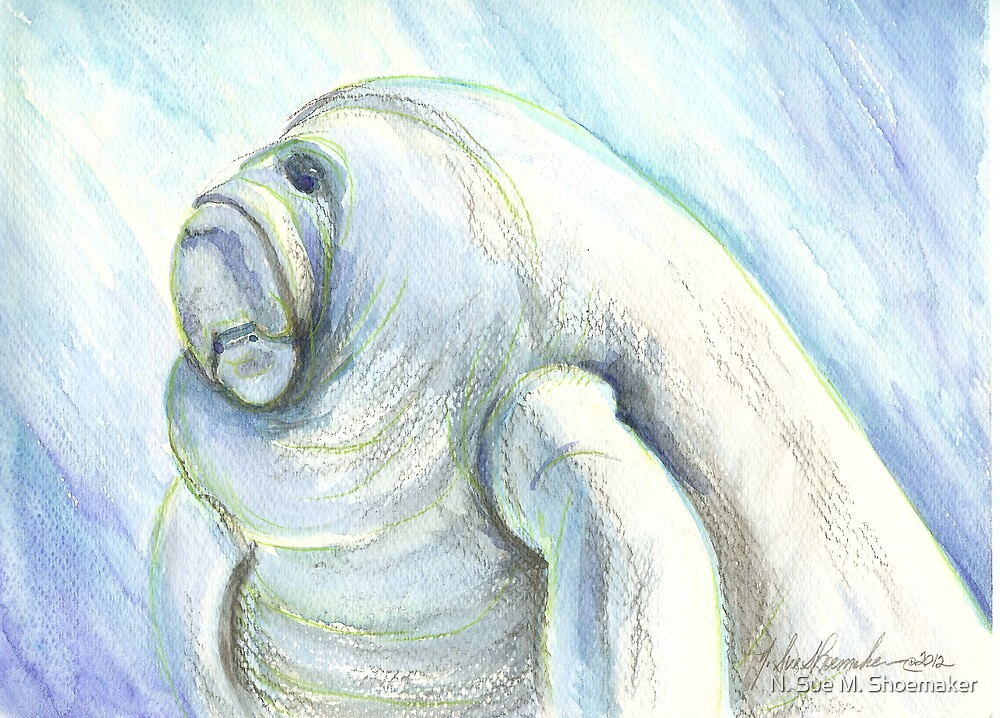 Manatee by N. Sue M. Shoemaker