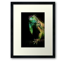 Scales of Light Framed Print