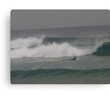 Winter Wave Rider at Gunnamatta Beach Canvas Print