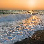 Golden Tide by Ticker