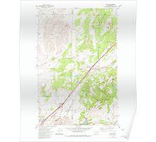 USGS Topo Map Washington State WA Tyler 244405 1980 24000 Poster