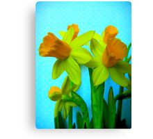 Daffodils with Blue Canvas Print