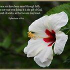 Ephesians  2:8-9 by Kelly Rockett-Safford