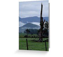 Misty Countryside Tas Greeting Card