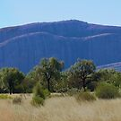 Part of KataTjuta or the Olgas Northern Territory Australia by Virginia  McGowan