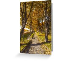 Quiet parkway Greeting Card