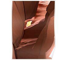 Antelope Art # 10 - Deep Seduction ©  Poster