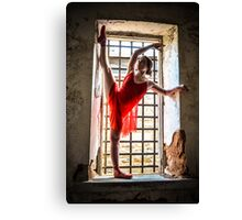 Dance Dreams Canvas Print
