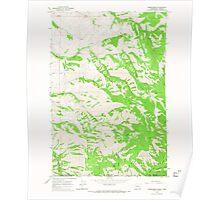 USGS Topo Map Washington State WA Kooskooskie 241805 1966 24000 Poster