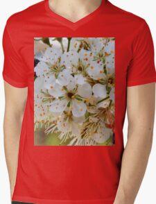 Tree blossoms Mens V-Neck T-Shirt