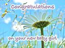Baby Girl Congratulations Greeting Card - Oxeye Daisies by MotherNature