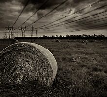 brooding bales of hay by jubrok
