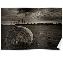 brooding bales of hay Poster