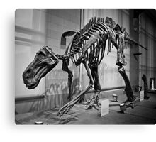 Dinos are cool. Canvas Print