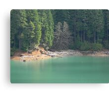 Foster Lake Canvas Print