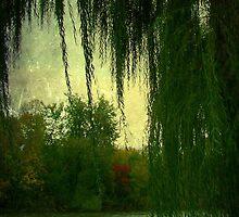 Paradise © by Dawn M. Becker
