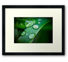 Beaded Water Framed Print