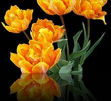 Tulips by Enri-Art