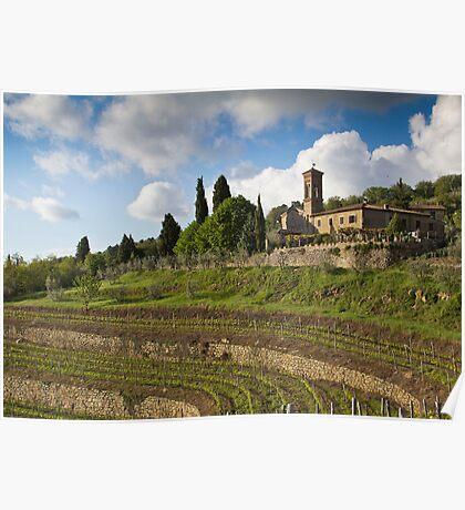 Italian Vineyard Poster